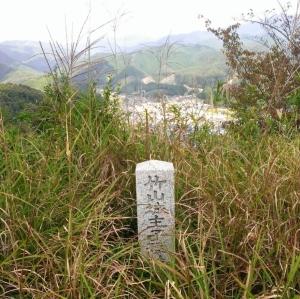 竹山城跡から眺める武蔵の里