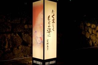 1600811kyonotanabata008.jpg