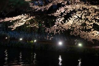 160404okazaki010.jpg