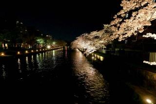 160405okazaki001.jpg