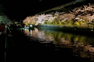 160405okazaki005.jpg
