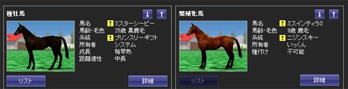 活性系統と活性馬