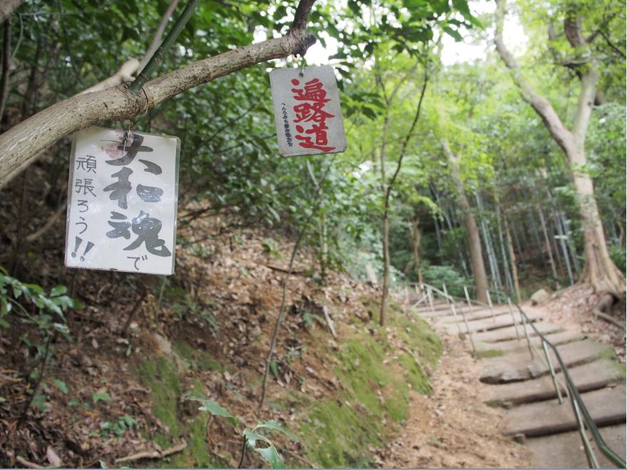 20161106 仙遊寺4