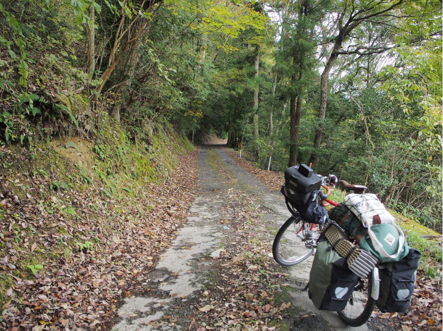 20161109 自転車旅14