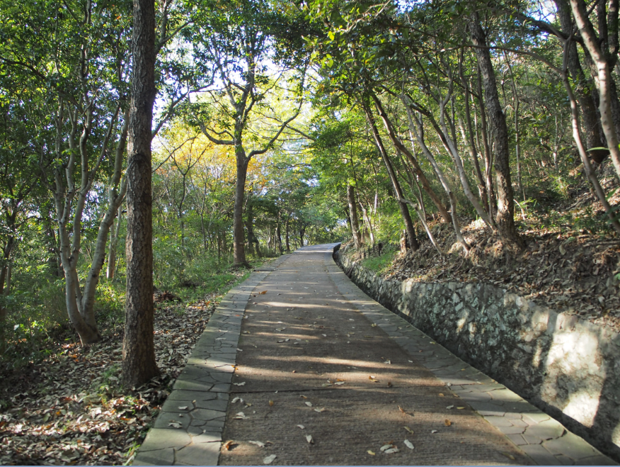 20161112 屋島寺登山