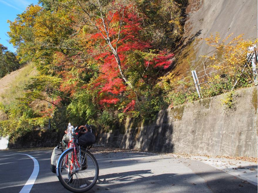 20161116 自転車旅11