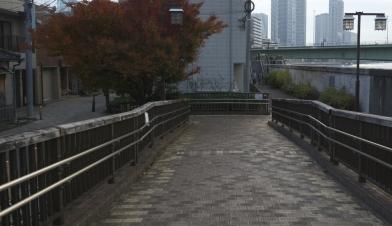 VLC01416b.jpg
