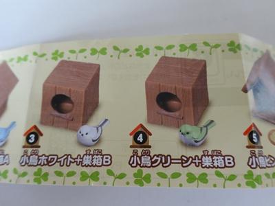 小鳥と巣箱