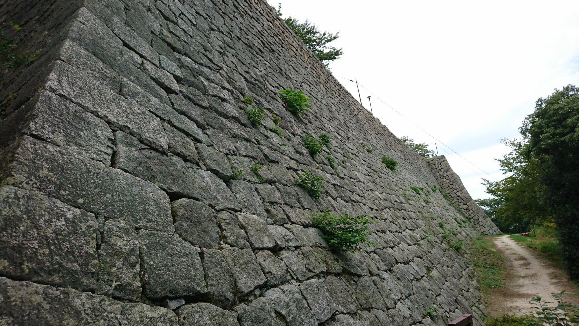 丸亀城城壁