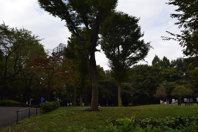 中央公園3