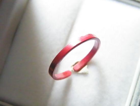 緋色の銅リング (19)
