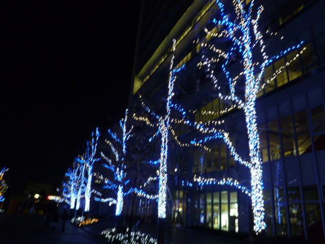 徳島文理大学 LEDイルミネーション