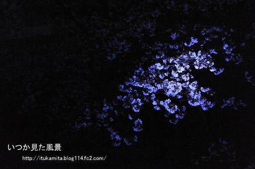 DS7_1038ri-ss.jpg