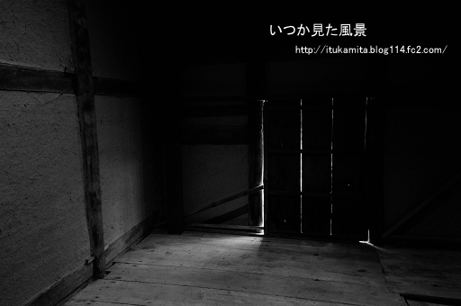 DS7_1093wi-ss.jpg