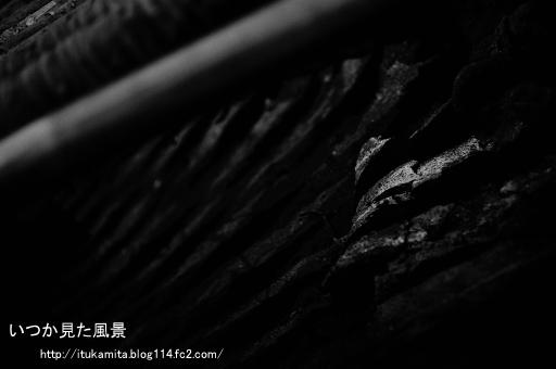 DS7_1124wi-ss.jpg