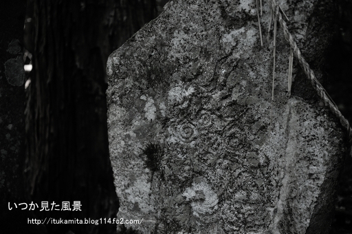 DS7_1412wi-ss.jpg