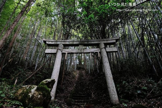 竹林の神社