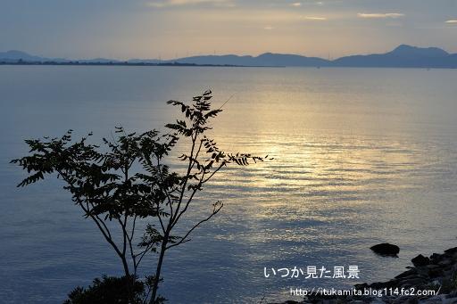 DS7_5729ri-ss.jpg