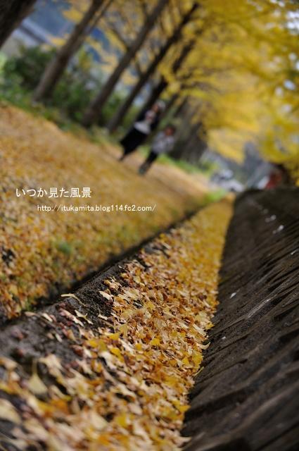 DS7_6559r2i-s.jpg