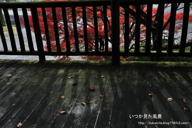 DS7_6629ri-s.jpg