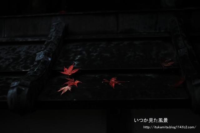 DS7_6955ri-s.jpg
