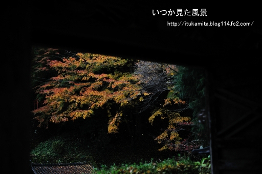 DS7_6982ri-ss.jpg