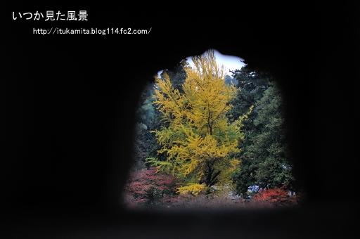 DS7_7010ri-ss.jpg