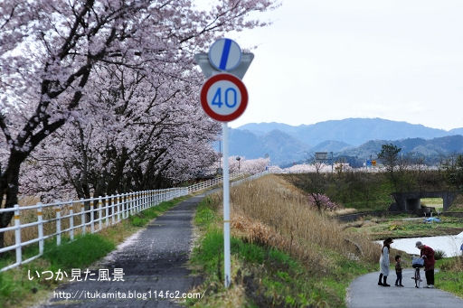 DS7_8748ri-ss.jpg