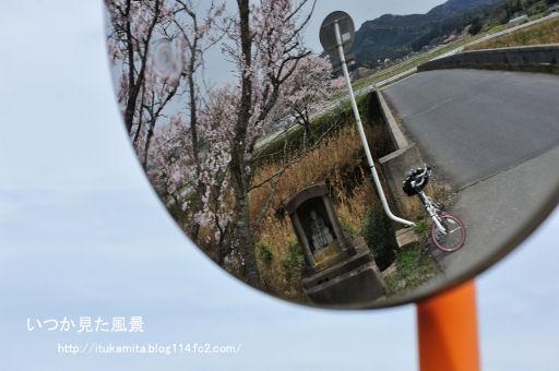 DS7_8902ri-ss.jpg