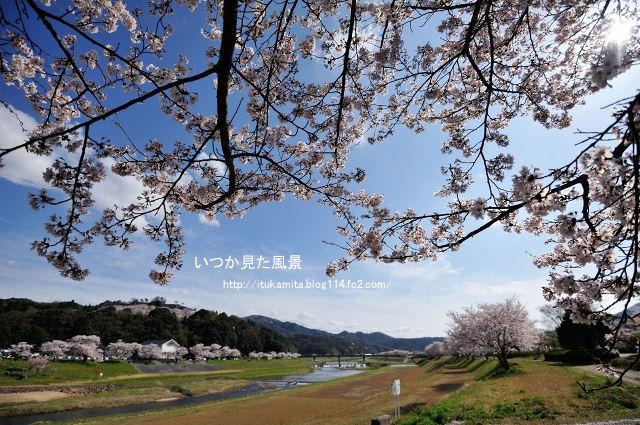 DS7_9211ri-s.jpg
