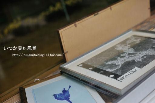 DS7_9875ri-ss.jpg