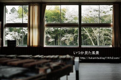 DS7_9898ri-ss.jpg