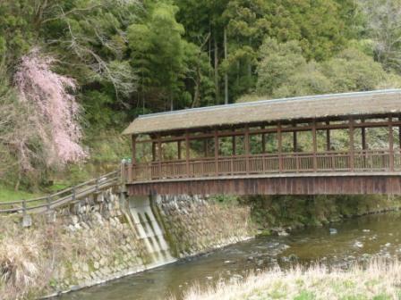 内子 桜風景 2