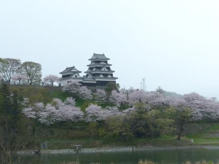桜 と 大洲城 2