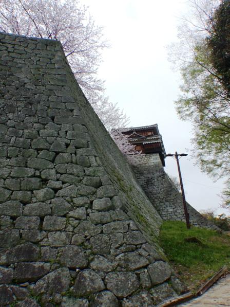 松山城 石垣と巽櫓