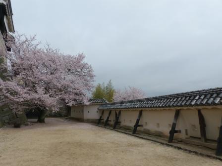 松山城 紫竹門西塀