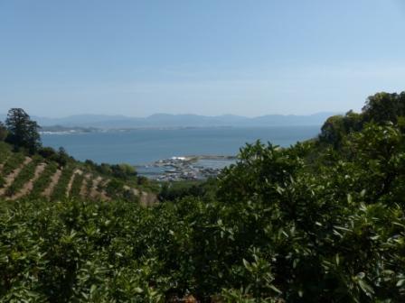 興居島の風景 7