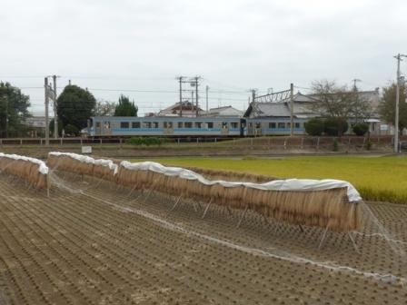 稲木 と 電車 (7000系)