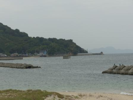 浅海の海岸 2
