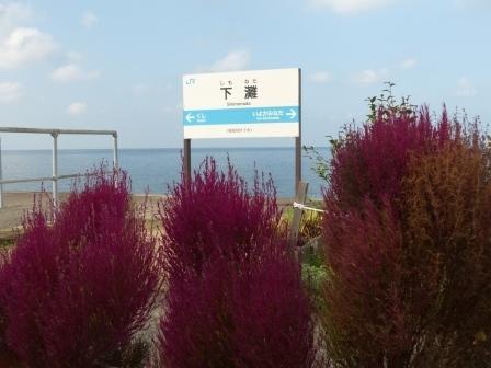 JR下灘駅 コキア 1