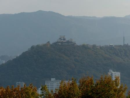 松山総合公園からの眺め 松山城 1