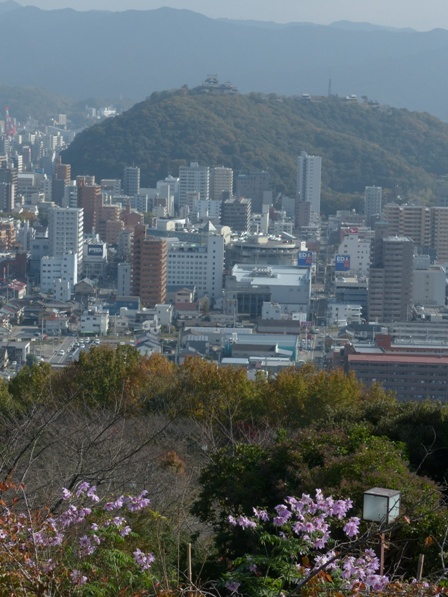 松山総合公園からの眺め 松山城 3