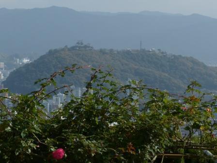 松山総合公園からの眺め 松山城 4