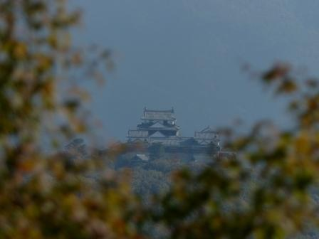 松山総合公園からの眺め 松山城 5