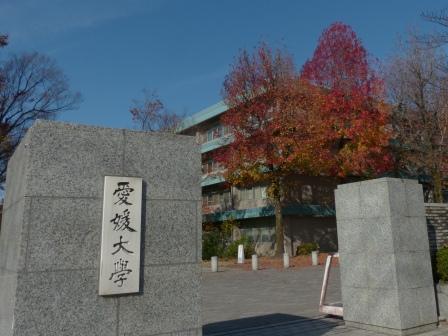 愛媛大学の紅葉 10