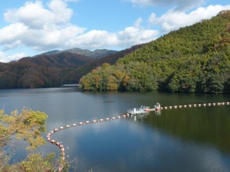 白鷺湖 3