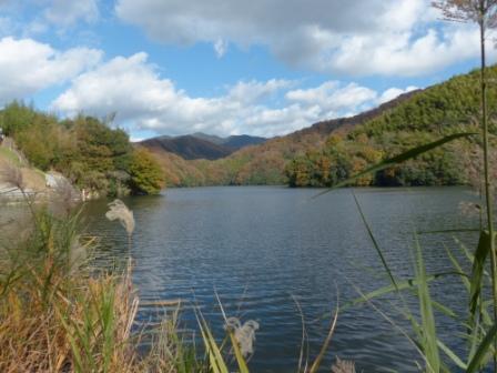 白鷺湖 4