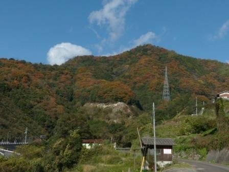 山の紅葉 2