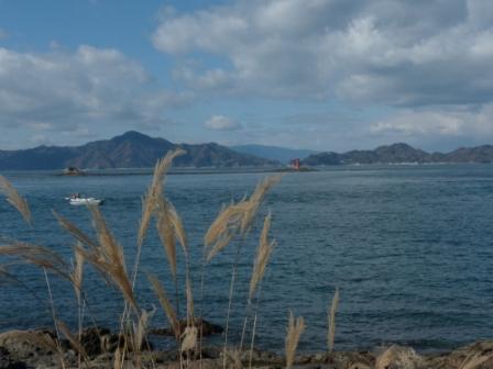 大角海浜公園 (近く) からの眺め 9