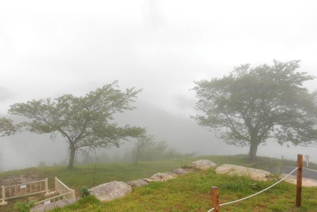 福知山、竹田城 087